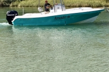 Brasboats Fly Fish 230