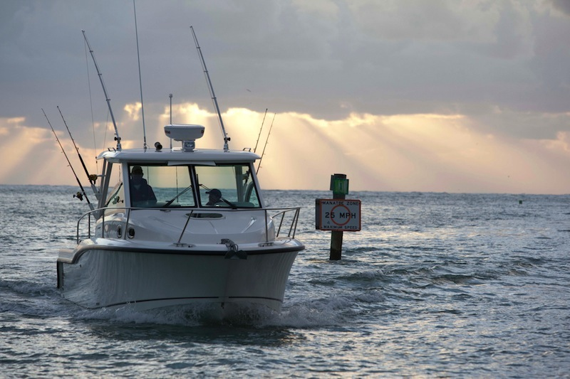 Boston Whaler315 Conquest