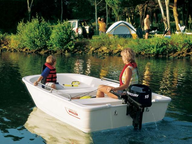 Boston Whaler110 Tender
