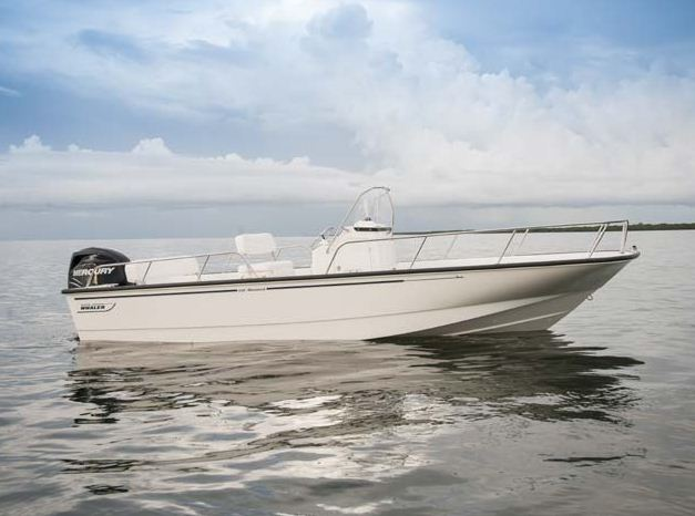 Boston Whaler210 Montauk