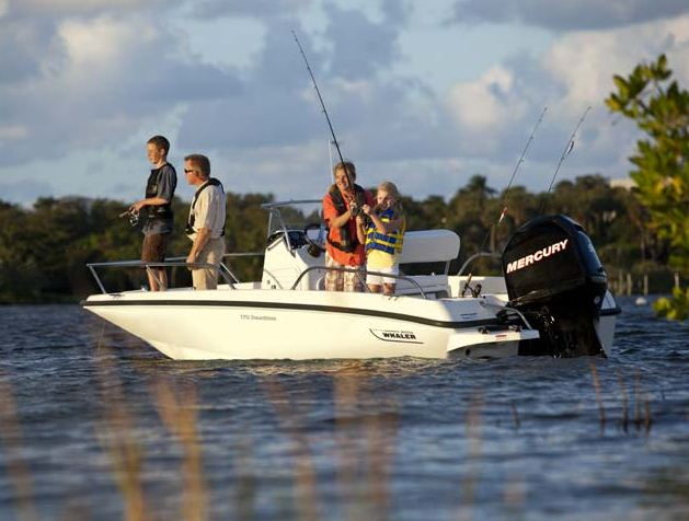 Boston Whaler170 Dauntless