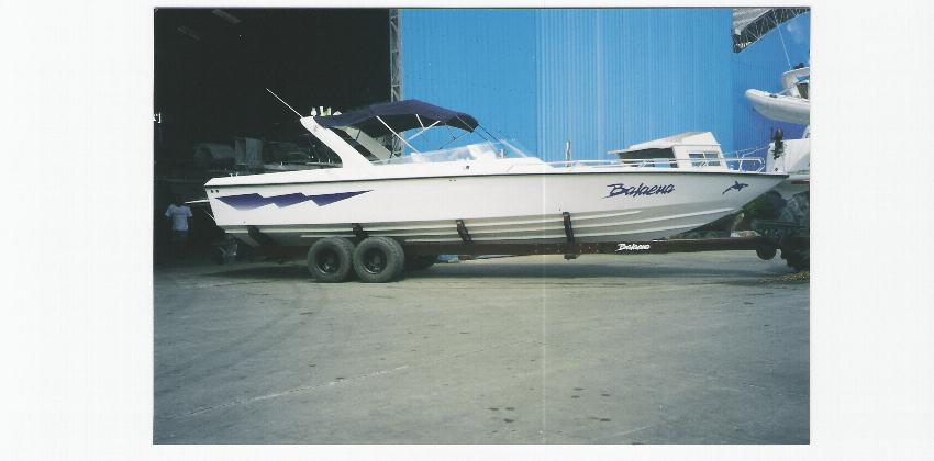 Intermarine Phanter 33