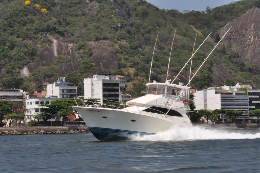 Vector II  Forza 44