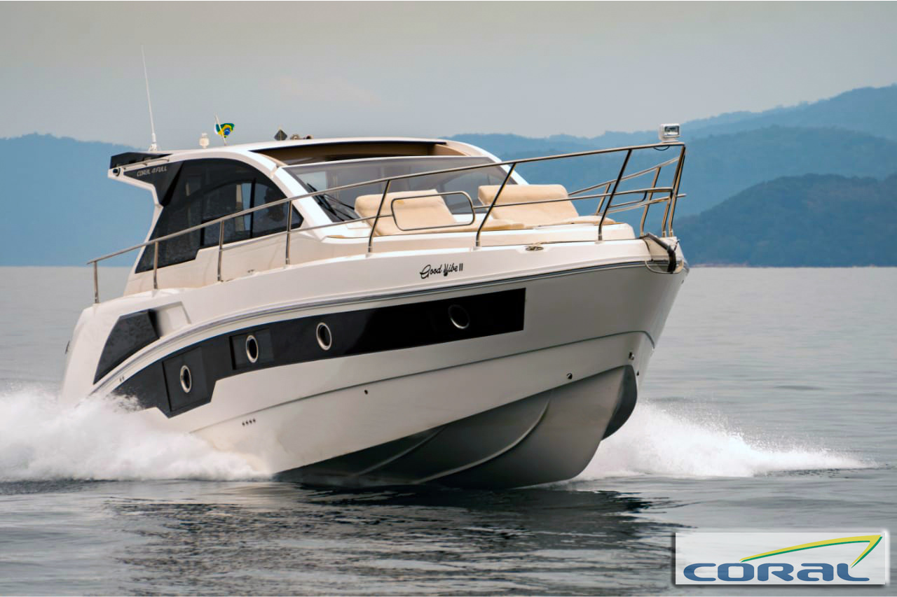 Coral 41